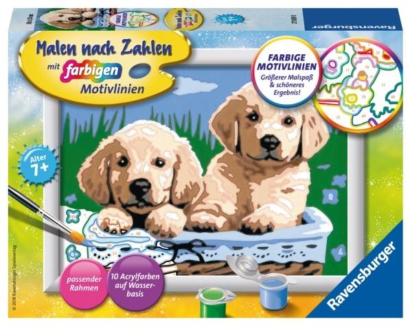 Ravensburger 27839 Malen nach Zahlen: Süße Hundewelpen